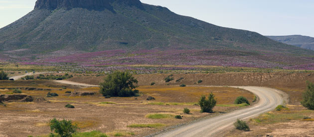 Find Colesberg Accommodation or Karoo Accommodation in the Northern Cape