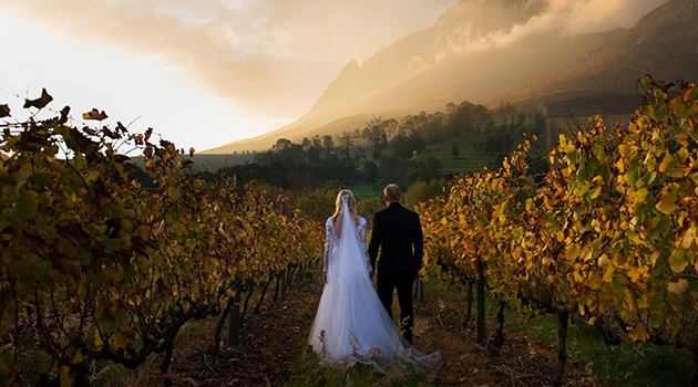 wine estate, wine stellenbosch, wedding venue, functions Banghoek Valley, picnics, accommodation stellenbosch, accommodation franschhoek, wedding cape town