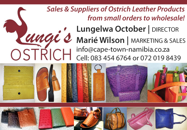 Lungi's ostrich products, ostrich leather, designer ostrich leather, Handbags, Wallets, Belts, Shoes, Jackets, Pants, lungelwa october, marie wilson, oudtshoorn, ostrich, south africa, klein karoo, ostrich eggs, painted ostrich eggs, ostrich feather dusters, ostrich bone, lamp stand, ostrich egg lamp, toothpick holders, salt and pepper shakers