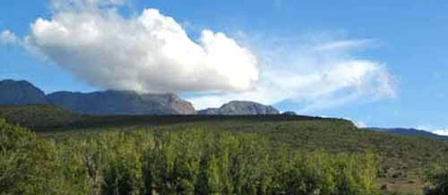 Klaarstroom, in the Western Cape, South Africa