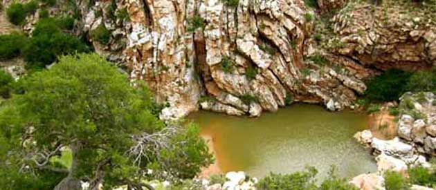 Wolwefontein is a quaint village situated on the R75 between Jansenville and Uitenhage in the Eastern Cape province of South Africa,